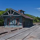 The Depot  Cohocton, NY, USA by Frank Kapusta