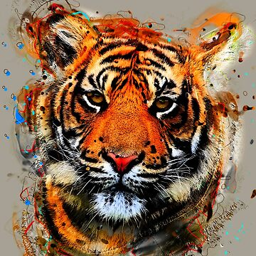 TIGER 8 by IMPACTEES