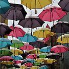 Pretty Umbrellas in the Orange Street Alley... by DonnaMoore