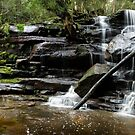 Somersby Falls panorama by Michael Howard