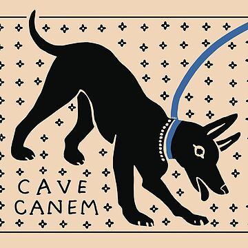 CAVE CANEM by flaroh