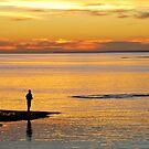 Golden Sunset by Roslyn Slater