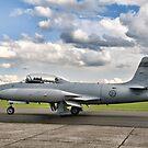 CT-133 Silver Star 133599 NX865SA by Colin Smedley