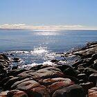 Beach St Helens Tasmania by Ainslie1