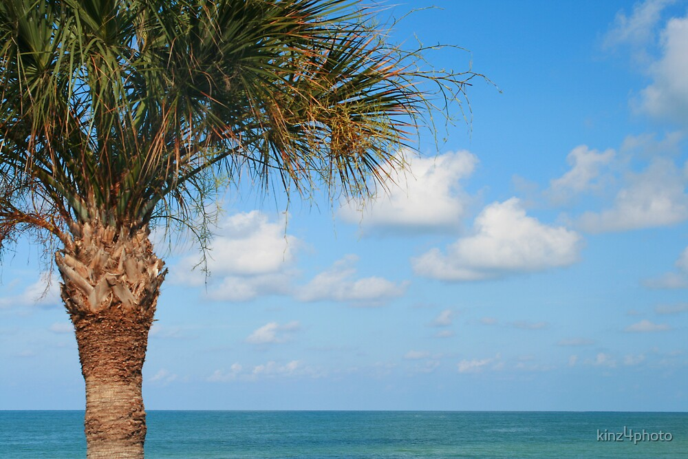 Sea and palm by kinz4photo