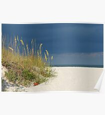 Seaoats by the sea Poster