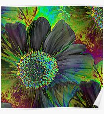 Kodachrome Floral Poster