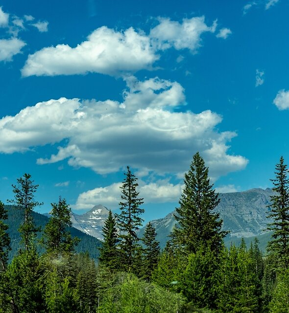 Glacier National Park--Drive By by Bryan D. Spellman