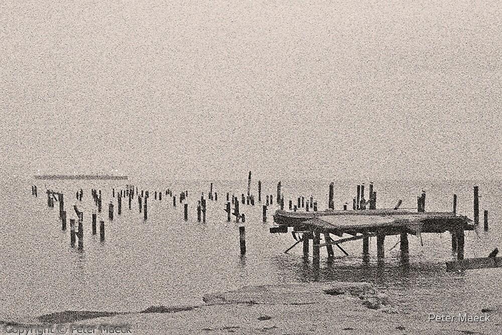 San Francisco Bay by Peter Maeck
