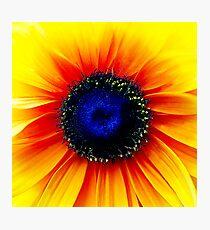 Colour Of Life XXIV [iPad case / Phone case / Laptop Sleeve / Print / Clothing / Decor] Photographic Print