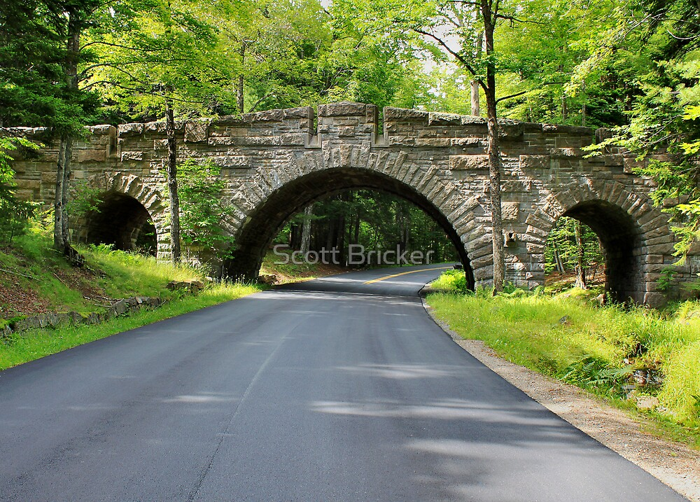 'Stone Bridge, Acadia Park' by Scott Bricker