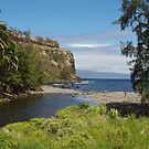 Honokohau Bay by Imagery