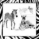 Zebras by Betsy  Seeton
