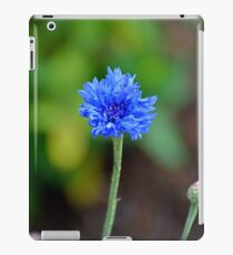 Grand Lake Floral Study 8  iPad Case/Skin