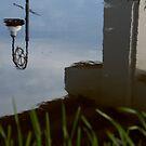 Reflection by cateye30