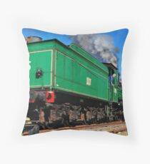In Reverse Throw Pillow