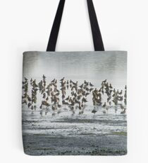 Plovers in the Mist Tote Bag