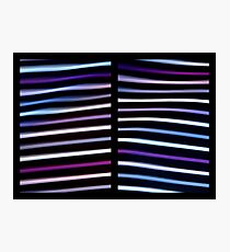 Stripes in Motion - Diptych Photographic Print