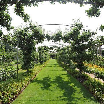 Archways Of Green by CreativeEm