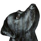 Black Labrador Painting by alicedesigns297