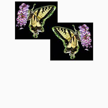 Butterflies by eggerist
