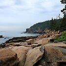 'Otter Cliffs at Low Tide' by Scott Bricker