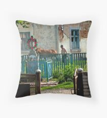 Scene from the village of Bieleh in Ukraine Throw Pillow