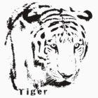 Tiger by Eduardo Tavares