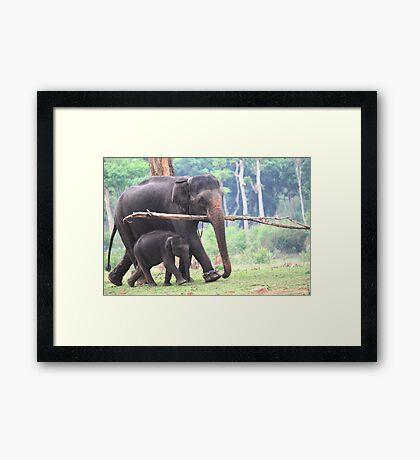 Safe With Mom! Framed Print