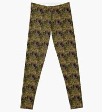A Hungry Moose Leggings