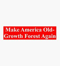 Make America Old-Growth Forest Again Photographic Print