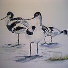 'Avocets' by fi-ceramics