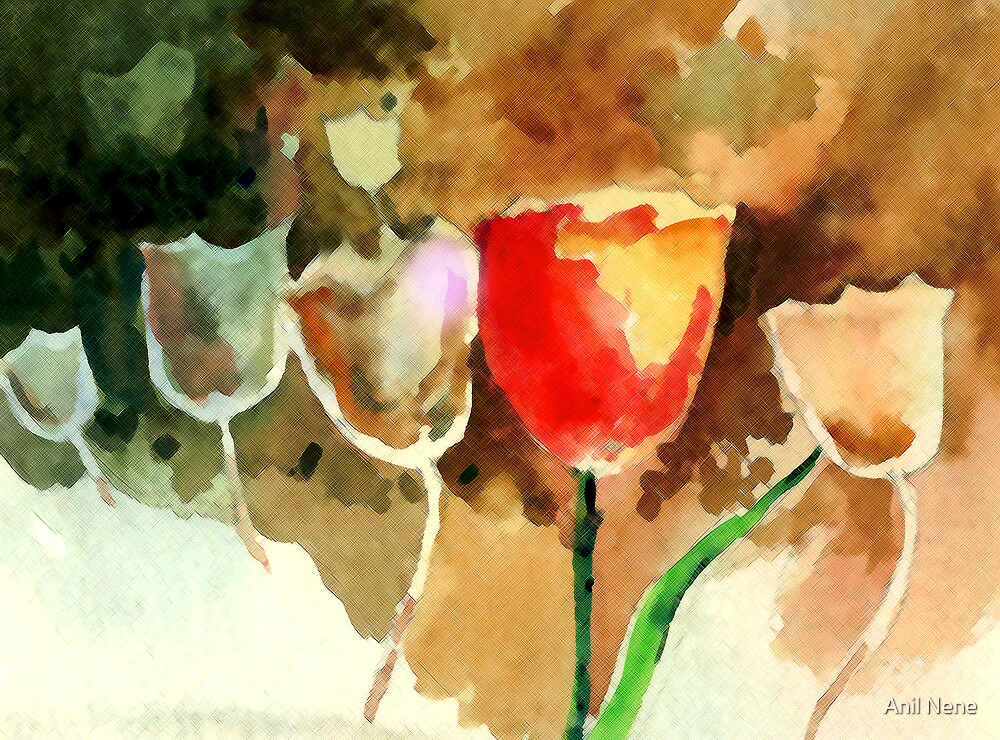Tulips1 by Anil Nene
