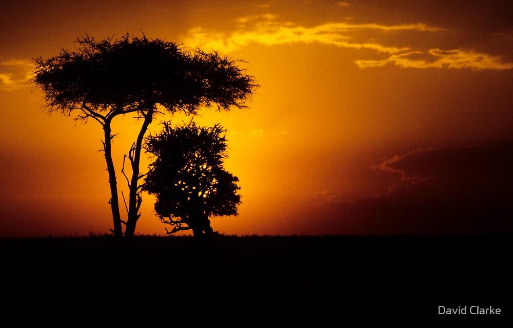 Mara sunset by David Clarke