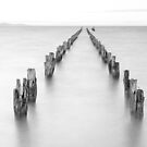 Clifton Springs Unsaturated by Neil