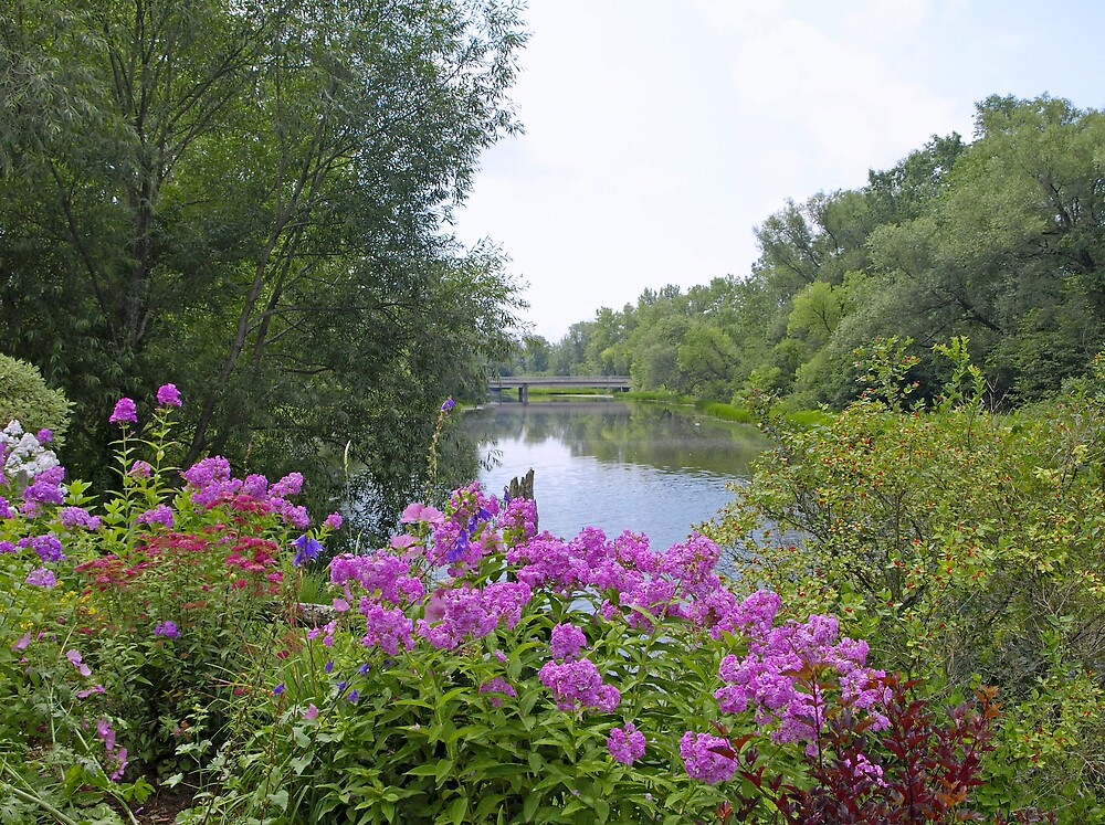 Flowers Garden By The River by marchello