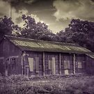 Old Wood Working shed by Nathan  Johnson