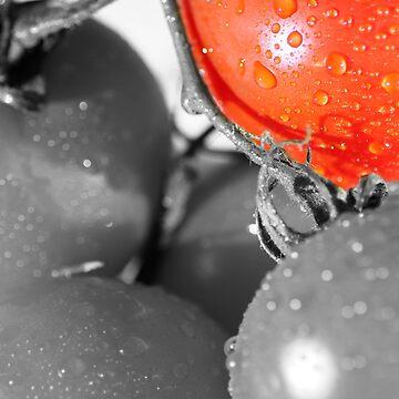 Tomato Color Splash by ANDIBLAIR