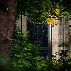 The gate by Jeremy Lavender Photography
