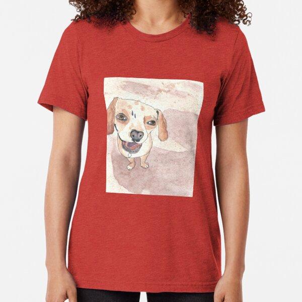 Docker at the Beach Tri-blend T-Shirt