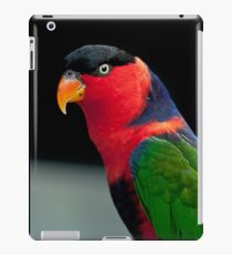 Black Capped Lory iPad Case/Skin