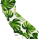 California Palm by coleenross