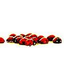 ladybug invasion 2 by Heike Nagel