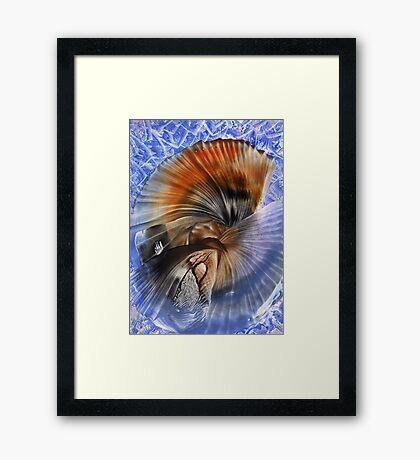Blue & Orange Framed Print