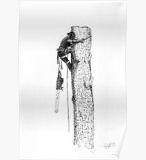 Arborist Tree Surgeon Lumberjack Logger chainsaw. Poster