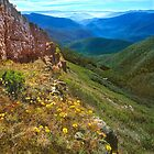 Upper Wonnangatta Valley by Kevin McGennan