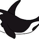 Orca  by rmcbuckeye