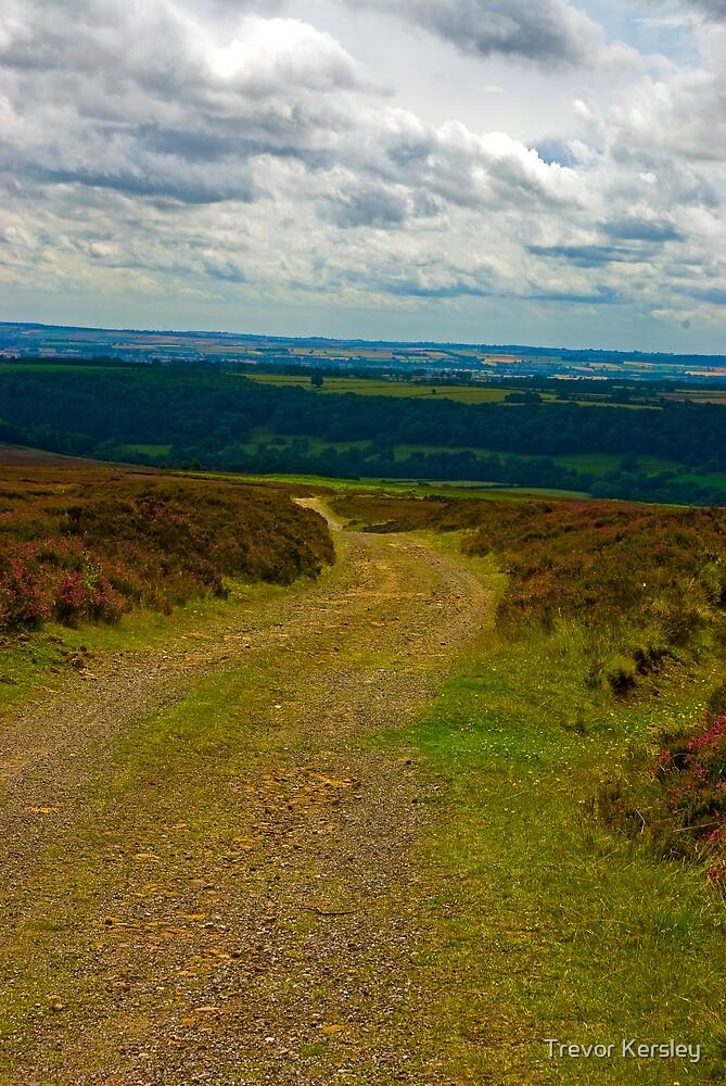 Moorland Track by Trevor Kersley