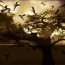 The ghost tree by Colleen Milburn