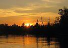 Glowing Sunset by Jaeda DeWalt
